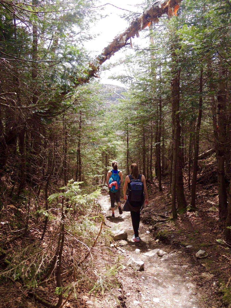 randonnée mont sutton
