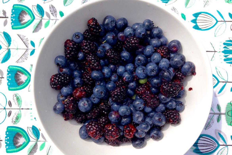 petits fruits d'été