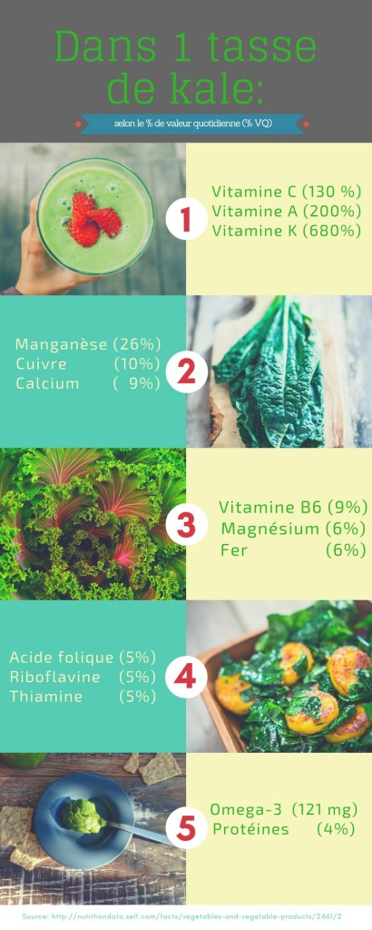 Kale Infographie 2
