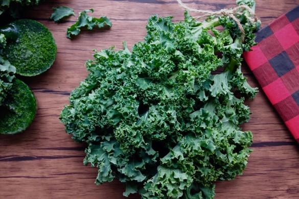 kale vert tout l'hiver