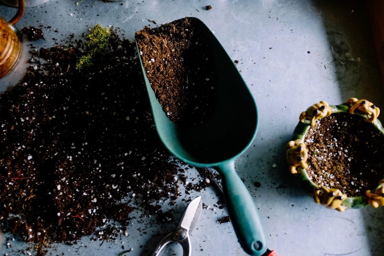 Planter et semer: retrouver le sacré en soi