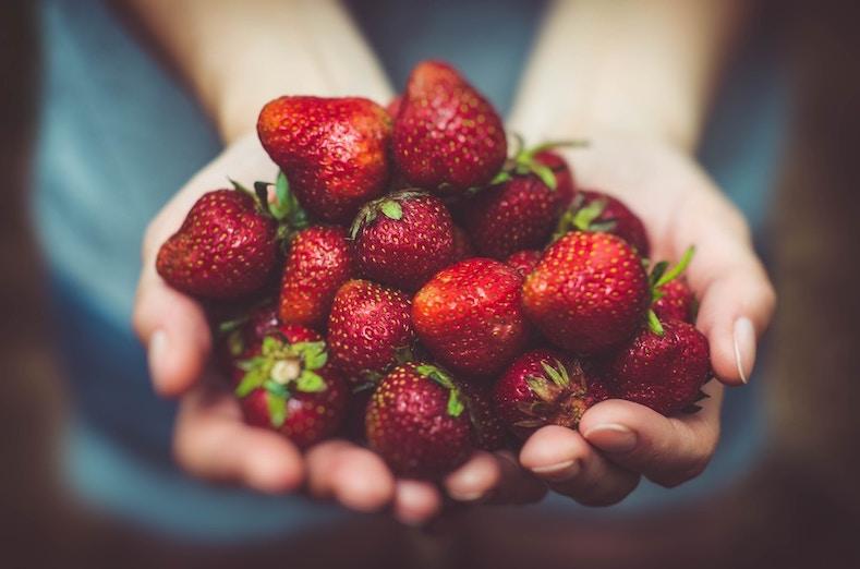 fraises fraîches l'été