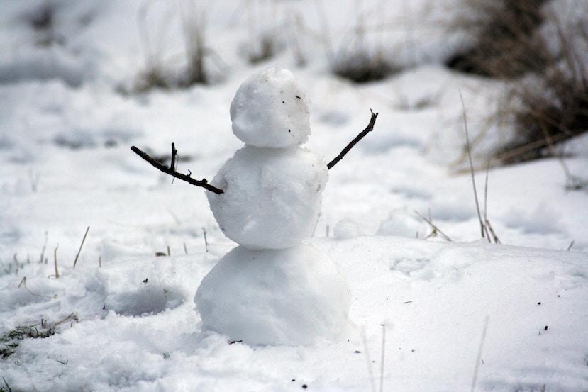 bonhomme de neige miniature hiver