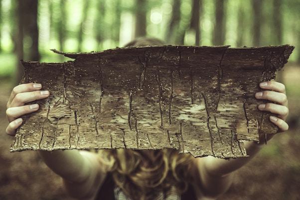 femme foret arbre