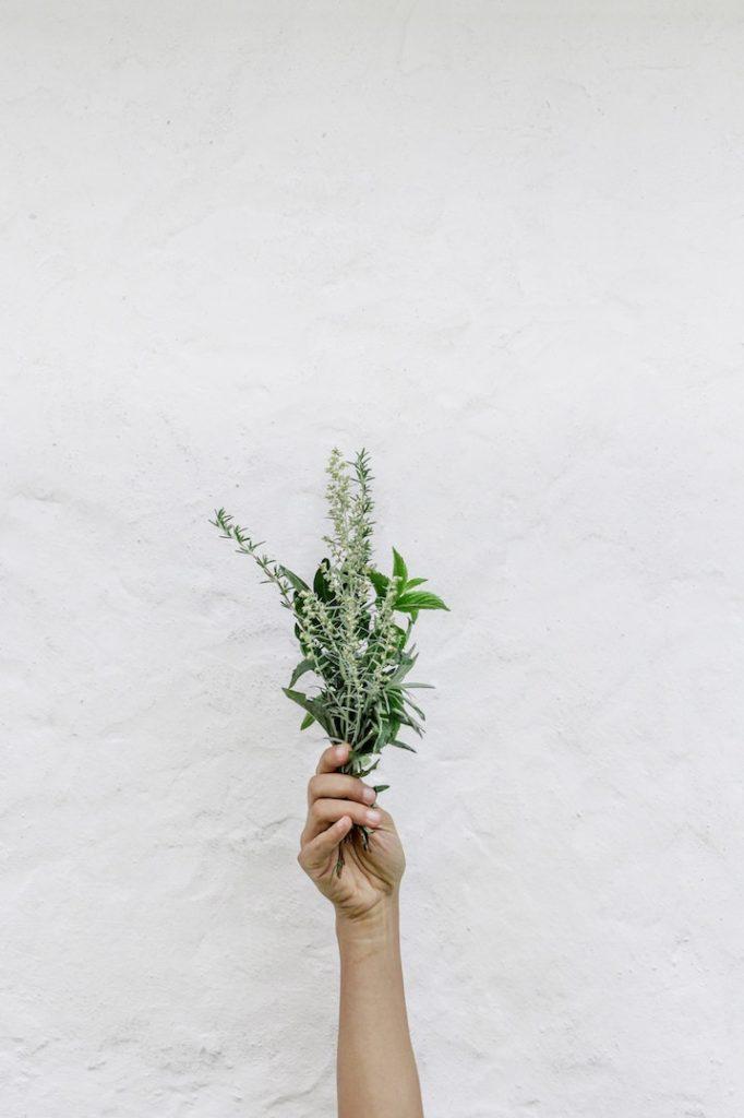 thym huiles essentielles contre le rhume