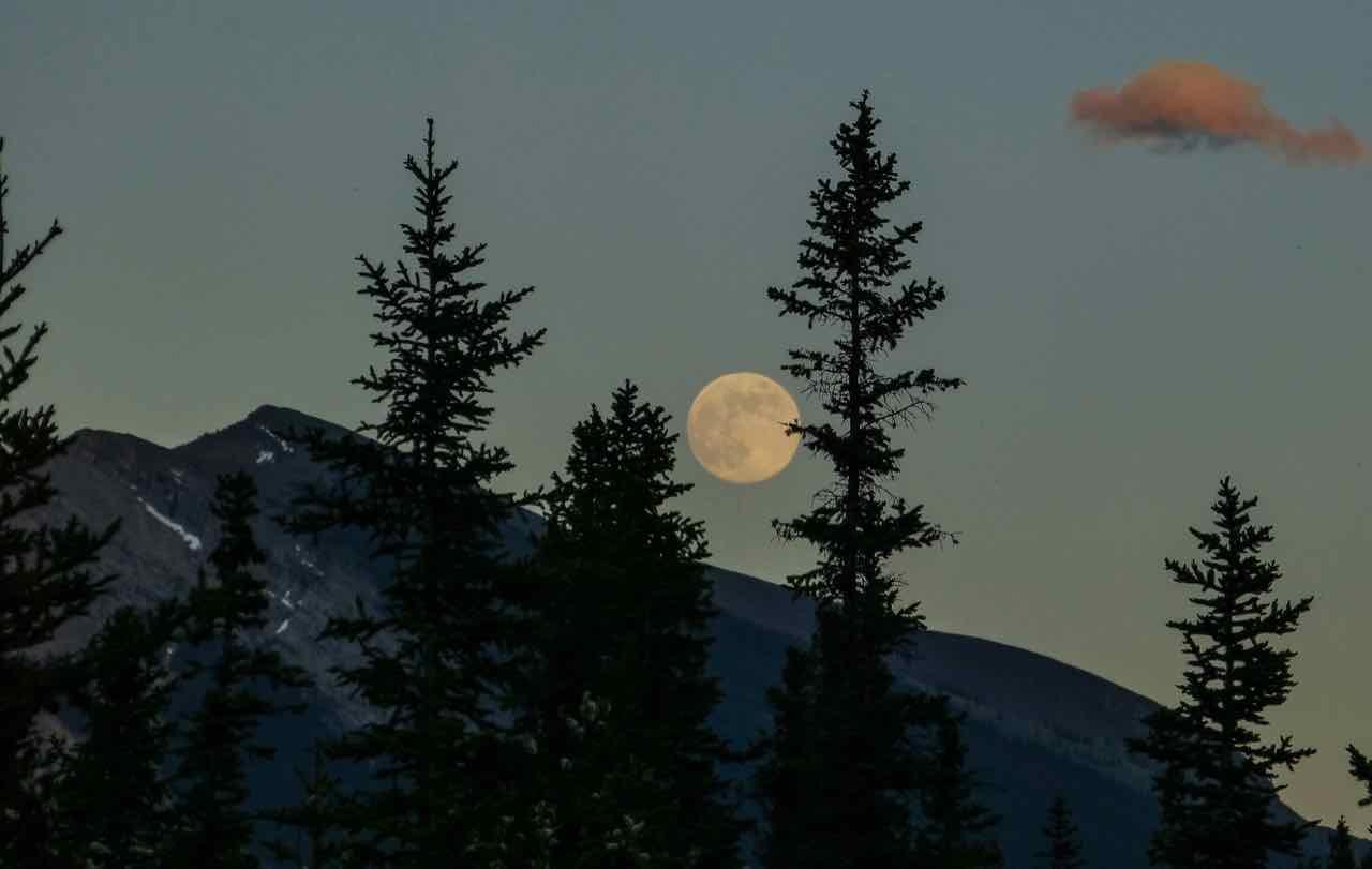 pleine lune ronde ciel nuit
