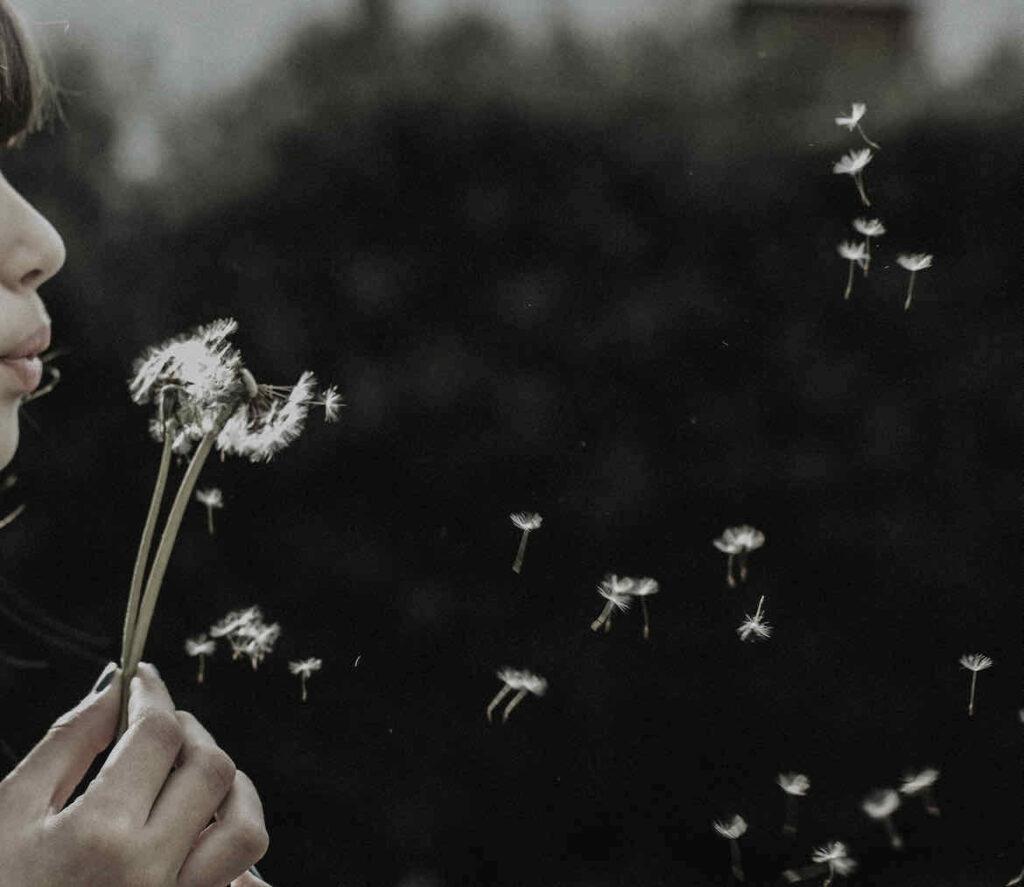 déconnecter nature fleurs